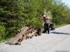 2009-04-25-cistejsie-podkonice-05