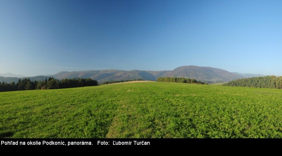 DSC_2142_panorama