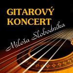 koncert_gitara_small