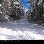 Zasnežená cesta na Pleše