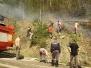 2013 Požiar medzi Konicami